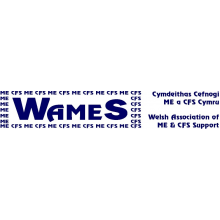 WAMES - ME in Wales