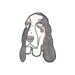 Basset Rescue Network of GB