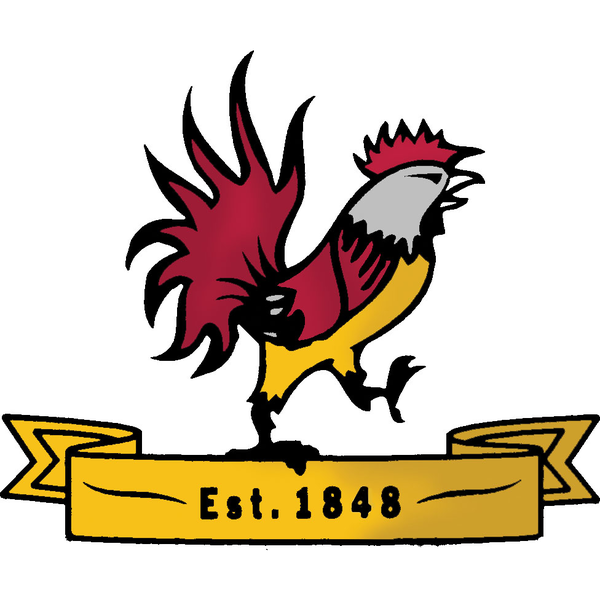 Orpington Cricket Club