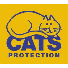 Croydon Cats Protection