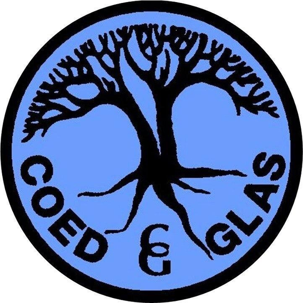 Coed Glas Primary School