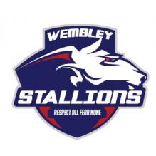 Wembley Stallions AFC
