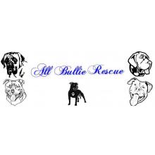 All Bullie Rescue - Peterborough