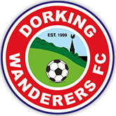 Dorking Wanderers Academy U16's