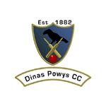 Dinas Powys Cricket Club