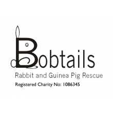 Bobtails Rabbit & Guinea Pig Rescue