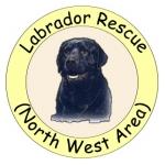 Labrador Rescue
