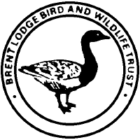 Brent Lodge Bird & Wildlife Trust