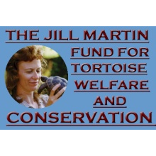 The Jill Martin Fund For Tortoise Welfare and Conservation
