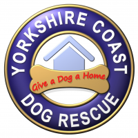 Yorkshire Coast Dog Rescue