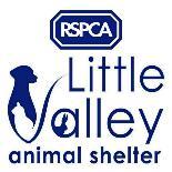 RSPCA Little Valley Animal Shelter - Exeter