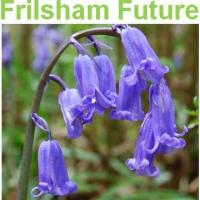 Frilsham Future