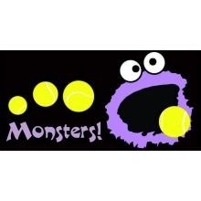 Monsters Wheelchair Fund