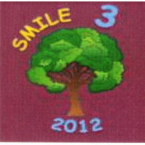 SMILE Stone Outward Division Girlguiding