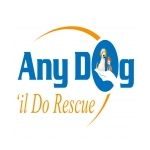 Any Dog'il Do Rescue