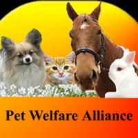 Pet Welfare Alliance