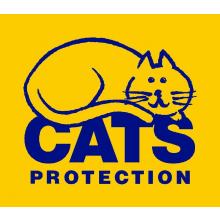 South Ayrshire Cats Protection