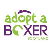 Adopt A Boxer Scotland