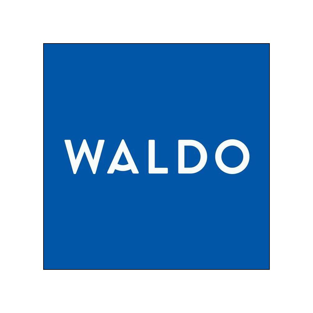 Waldo Daily Contact Lenses