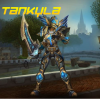 Tankyla Coach