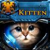 Kitten Coach