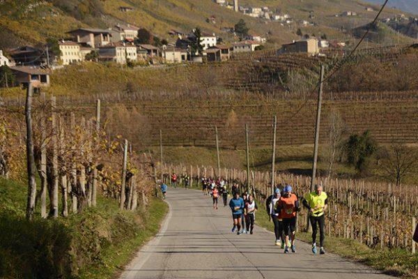 Prosecco Run, in 2600, tra corsa Fiasp e gara Fidal, che è passata dentro 18 cantine del Docg