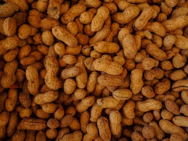 Burro d'arachidi, un (sano)morso d'America