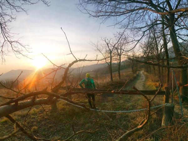 Running e Foto: Qualche Consiglio