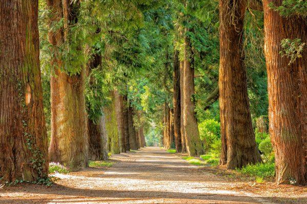 Vacanze green: gli italiani sempre più ecoturisti