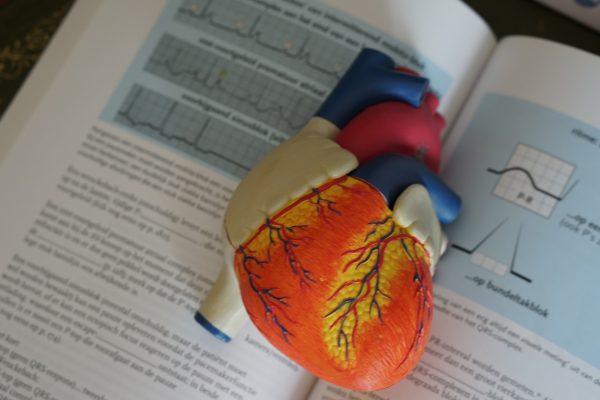 Perché non dimagrisco? Chiedilo al tuo cuore attraverso l'Heart Rate Variability