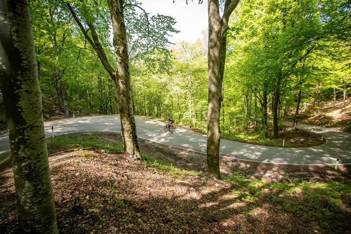 Il Trentino dal Nord al Sud, la 17ma tappa del Giro d'Italia
