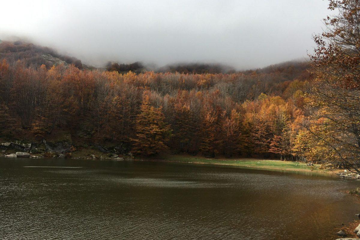 Trail Running in autunno: tutto quello che ti serve