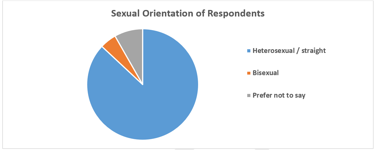 The pie chart shows the sexual orientation of people who answered the survey. Most people identified as heterosexual/straight, no one was gay or lesbian sexual orientation. 87% of people who answered the survey are heterosexual/straight, 8% preferred not to tell us and 5% are bisexual.