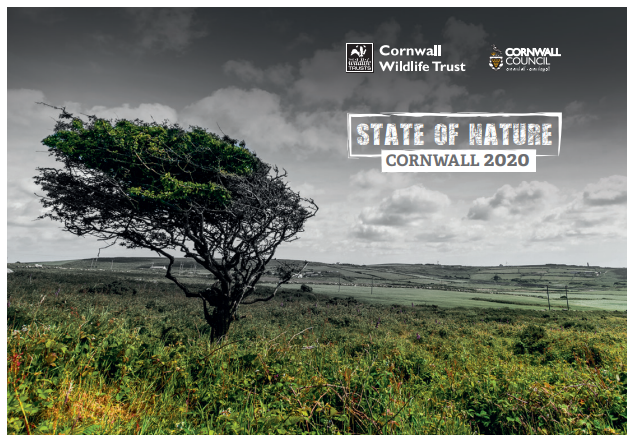State of Nature: Cornwall 2020 summary infographic