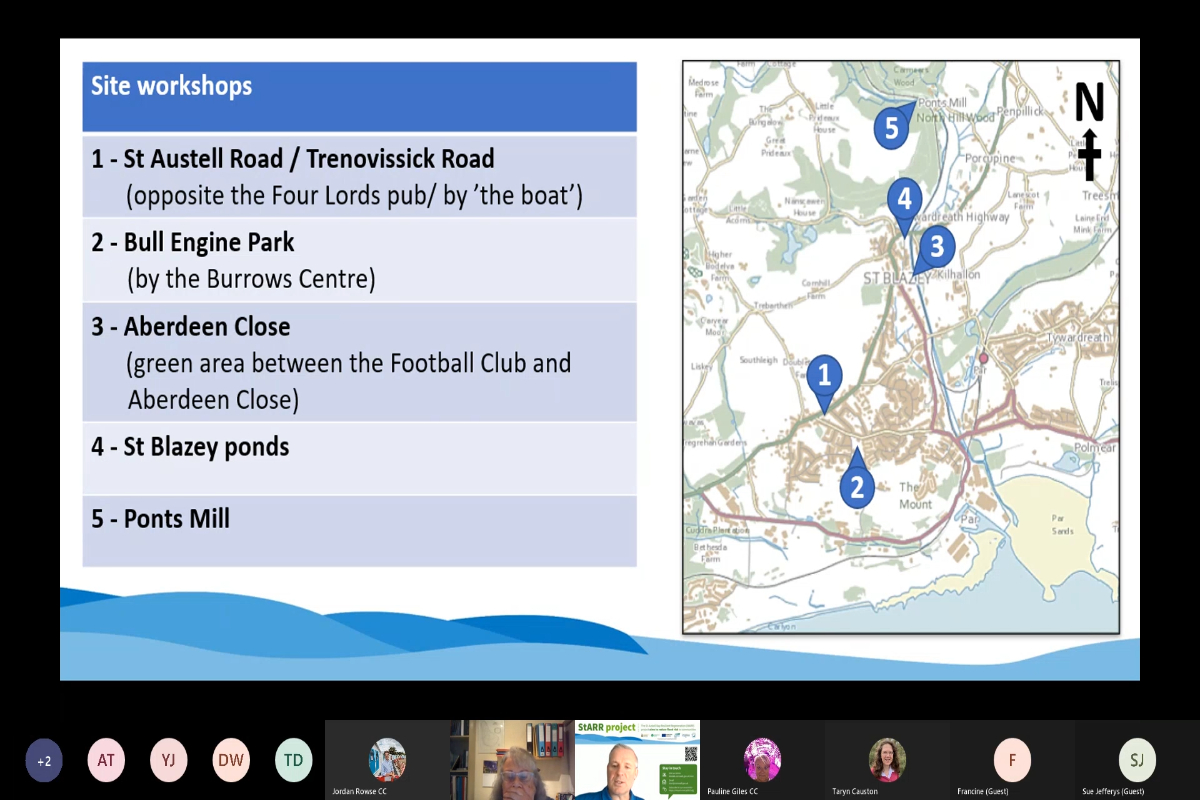 StARR Community Landscape Webinar 1 - Bull Engine Park & St Austell Road meeting recording