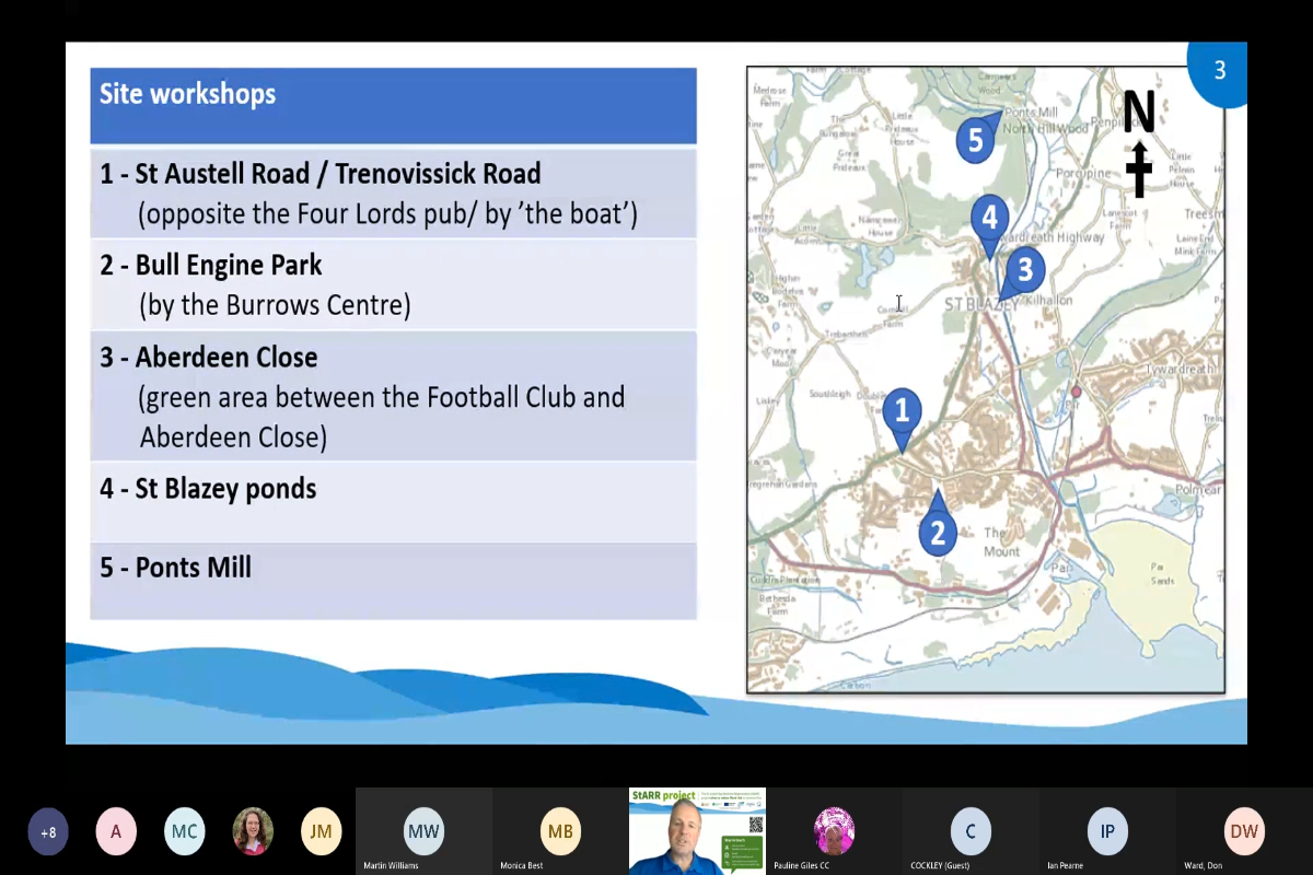 StARR Community Landscape Webinar 2 - Aberdeen Close and St Blazey ponds meeting recording