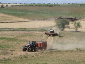 La feina de pagesos i ramaders per mantenir i defensar la terra no sempre és compresa des de les grans ciutats / Fernando Jiménez