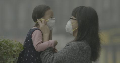 La Mostra de cinema 'Salut, drets, acció' se centra enguany en el medi ambient