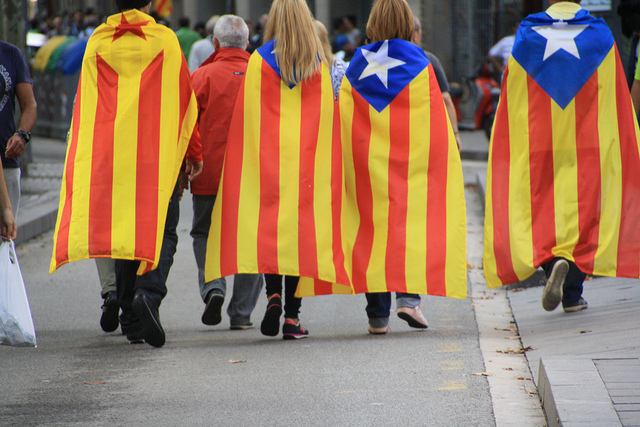 Estelades a la Via Catalana de 2013. Foto: Núria