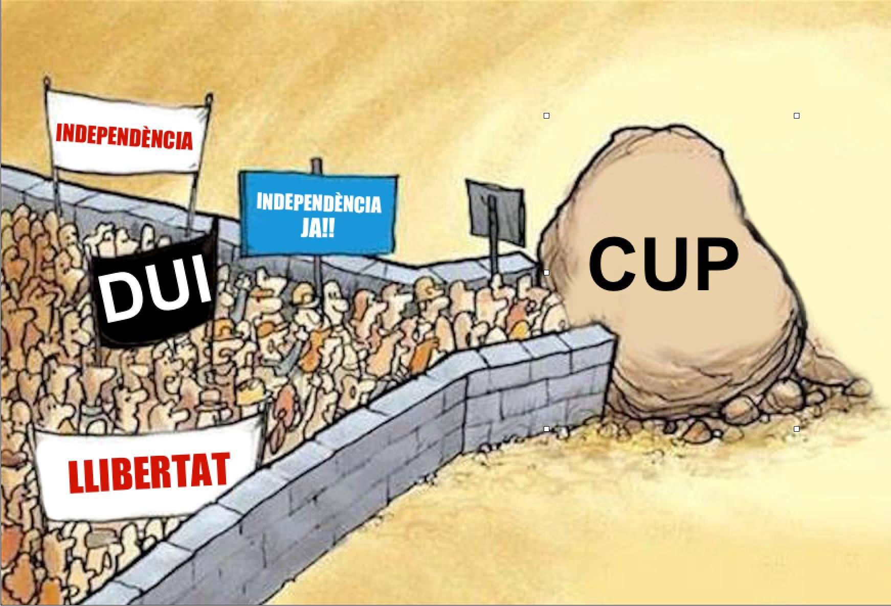 Un dels 'memes' que més ha corregut per les xarxes sobre l'actitud de la CUP.