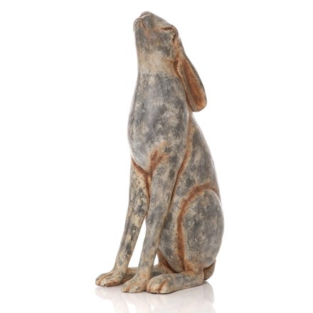 Large Moongazing Hare