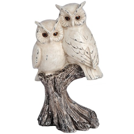Pair of owls on a branch