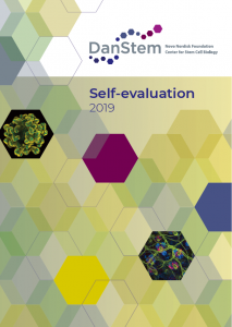 DanStem self-evaluation cover