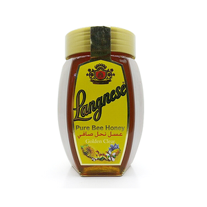 Langnese Pure Bee Honey 1Kg