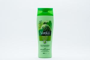 Dabur Vatika Hair Fall Control Shampoo 400ml