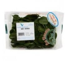 La Veneta Baby Spinach Italy 1pkt