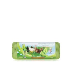 Al Jazira Eco & Veg Fed Hen Eggs 12s