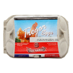 Tregor Free Range Fresh Eggs 6s