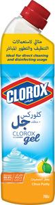 Clorox Citrus Purity Scent Multi Purpose Bleach Gel Disinfectant Cleaner 750ml