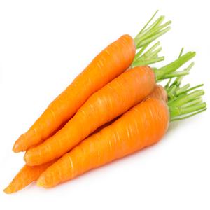 Organic Carrot Holland 500g pkt